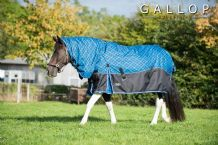 Super Heavy Weight 450g Full Neck Combo Check Turnout Rug.